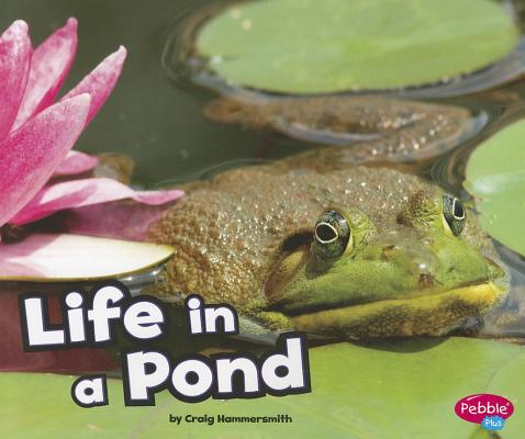 Life in a Pond By Hammersmith, Craig